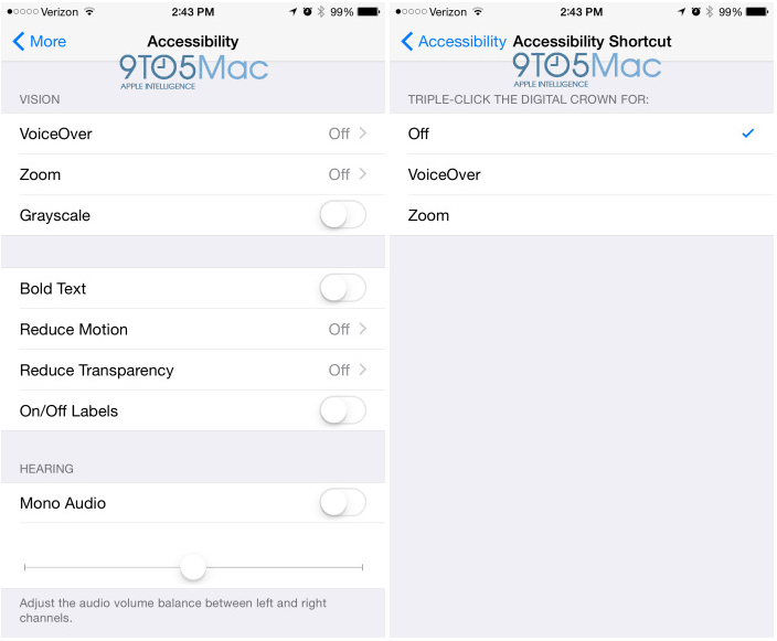 Aplicatie Apple Watch iOS ACCESIBILITATE