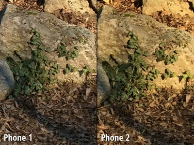 Nexus 6 vs iPhone 6 Plus comparatie camera 4