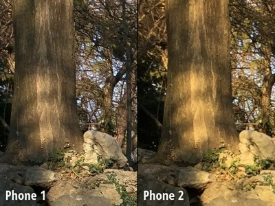 Nexus 6 vs iPhone 6 Plus comparatie camera 5