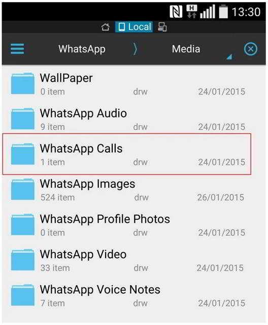 WhatsApp Messenger apeluri