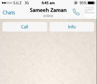 whatsapp messenger apeluri voce