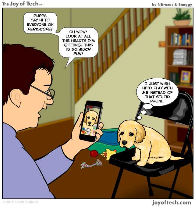 atentie animale
