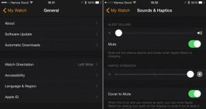 setari aplicatie Watch iPhone iOS 8.2 1