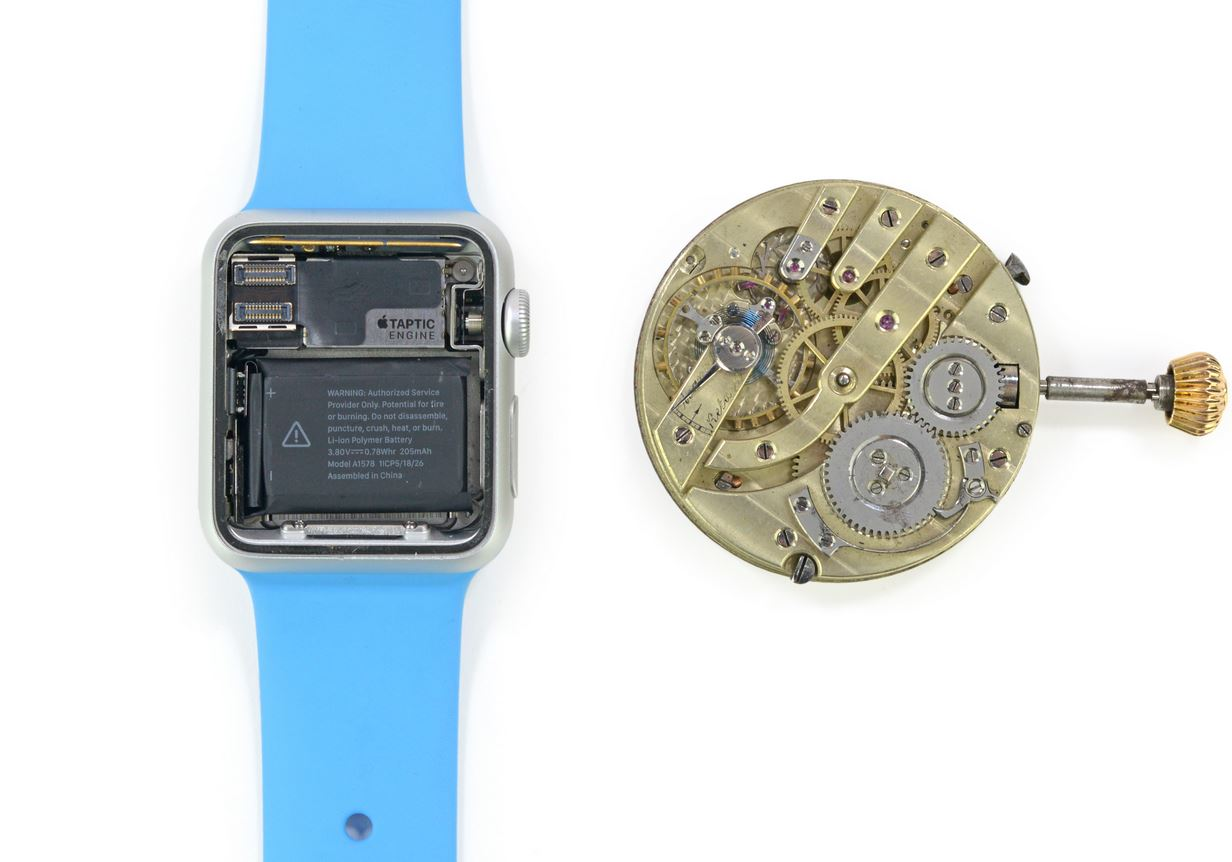 Apple Watch dezasamblat 2