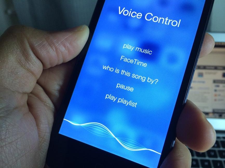 No Voice Control