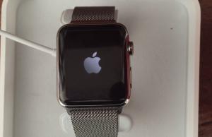 Apple Watch reboot loop