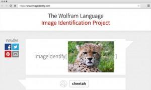 Wolfram identificare imagini