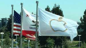 Apple steag gay