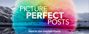 Picture Perfect posts