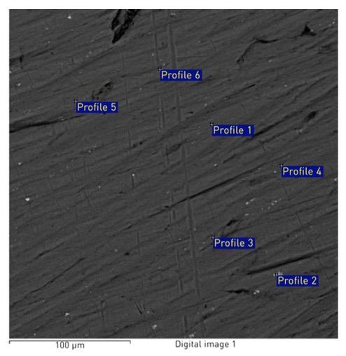 carcasa iPhone 6S analizata microscop 1