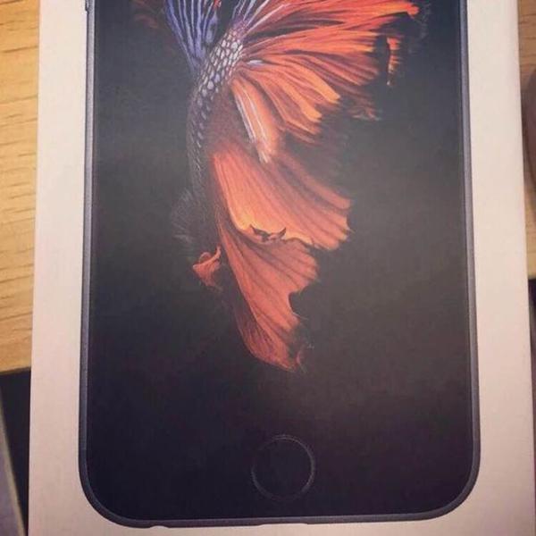 cutie iPhone 6S negru