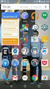 Sridhar Ramaswamy vicepresedinte Google reclame ecommerce