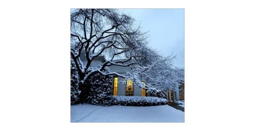 iPhone fotograf oficial casa alba 4