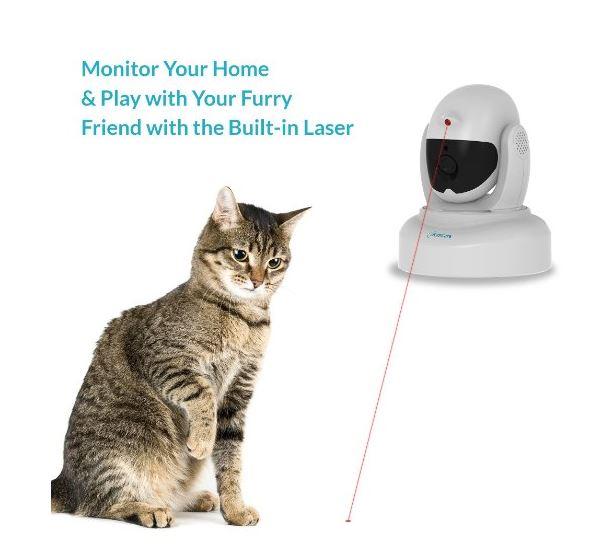 pisica monitorizare laser