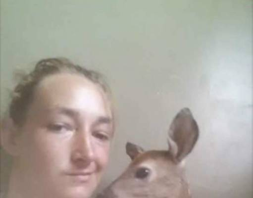 selfie caprioara