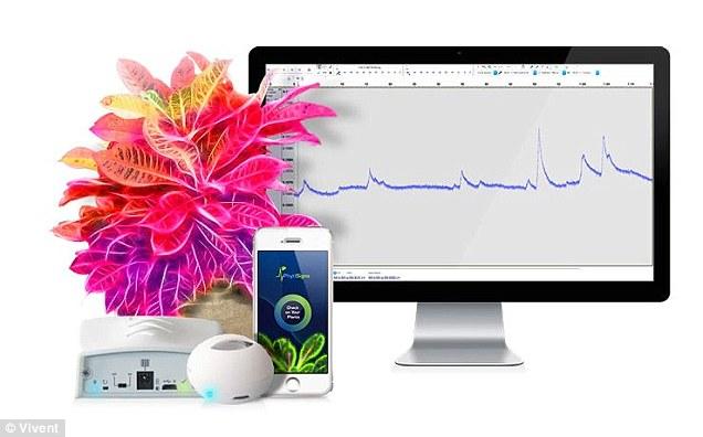 sistem monitorizare comunicare plante