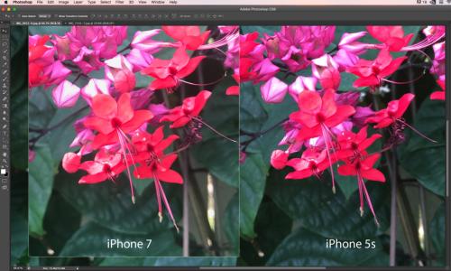 iphone-7-plus-problema-camera