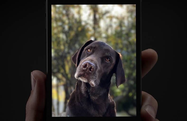 iphone 7 plus functie portret