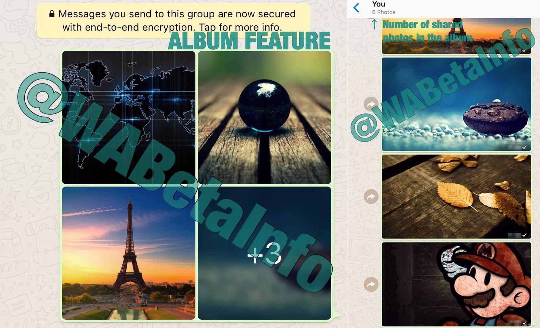 WhatsApp poze albume