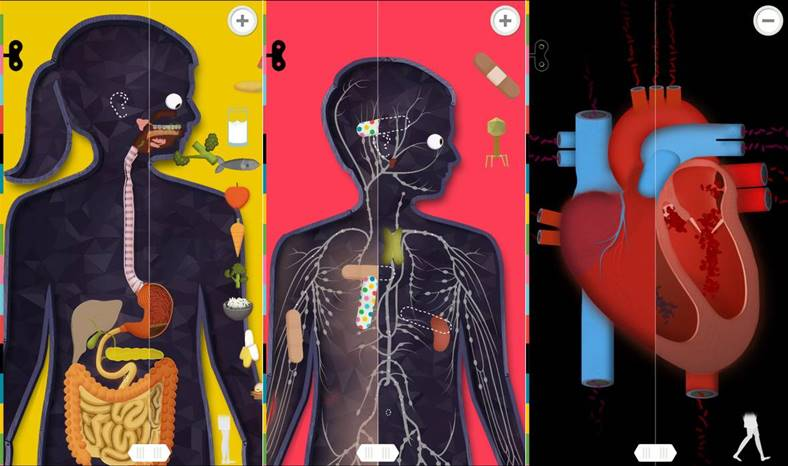 The Human Body reducere iphone