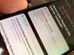 iOS 11 Siri Renunta Bing Google