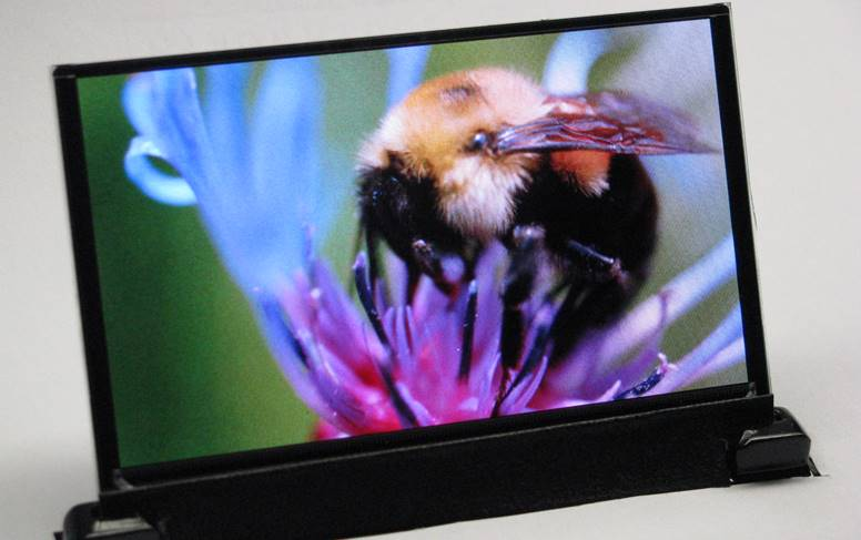 OLED popularitate LCD