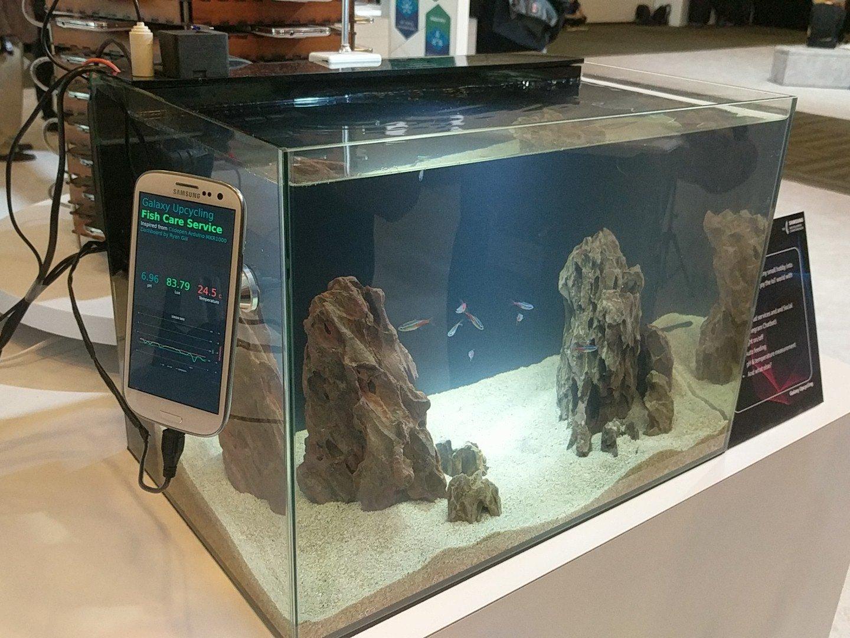 Samsung Galaxy S5 acvariu