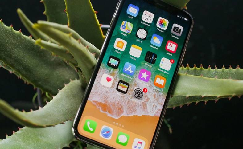 Apple lauda review iPhone X