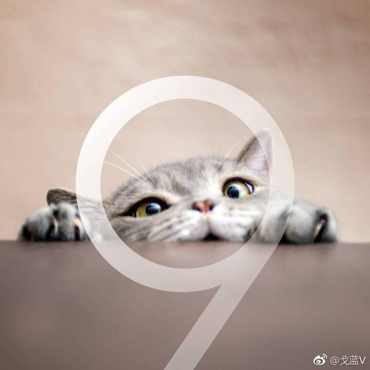Samsung Galaxy S9 imagini internet 2