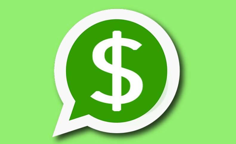 WhatsApp YouTube Utilizatori Activi