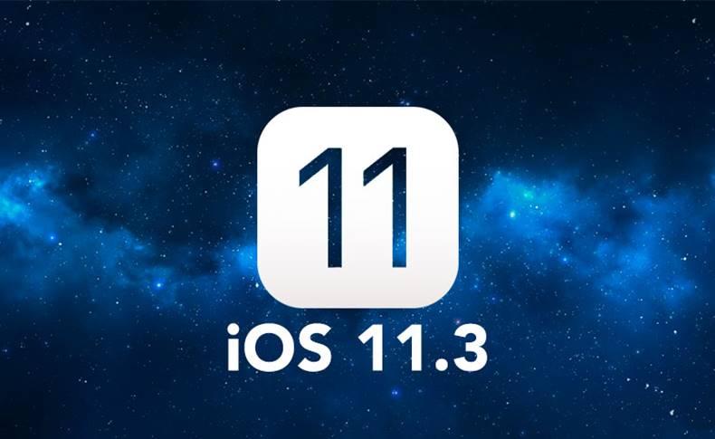 ios 11.3 ipad 2018