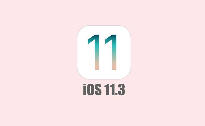iOS 11.3 Functia Lipseste iPhone