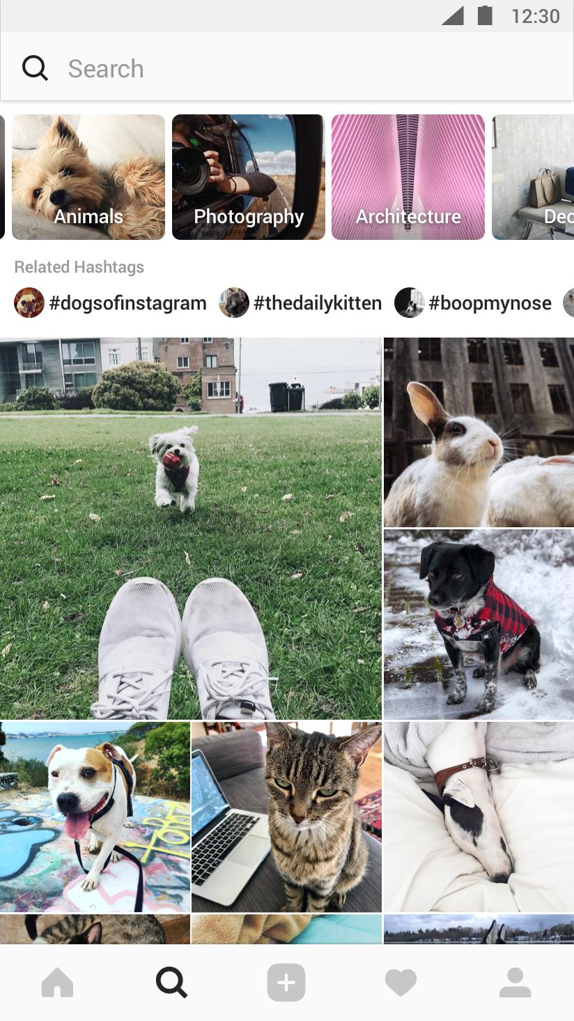 instagram explore continut interes