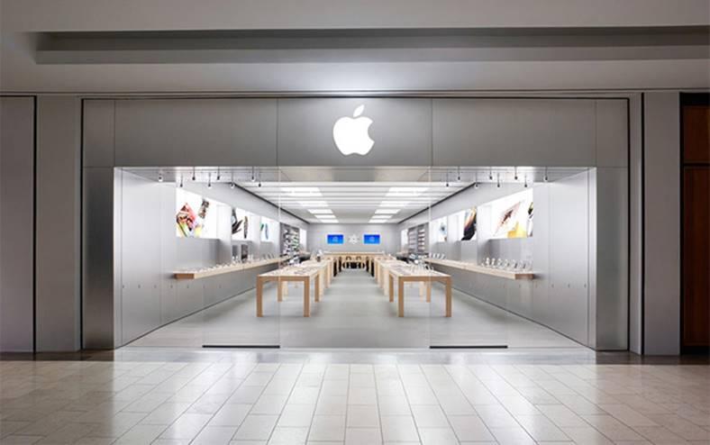 17 persoane furt apple store