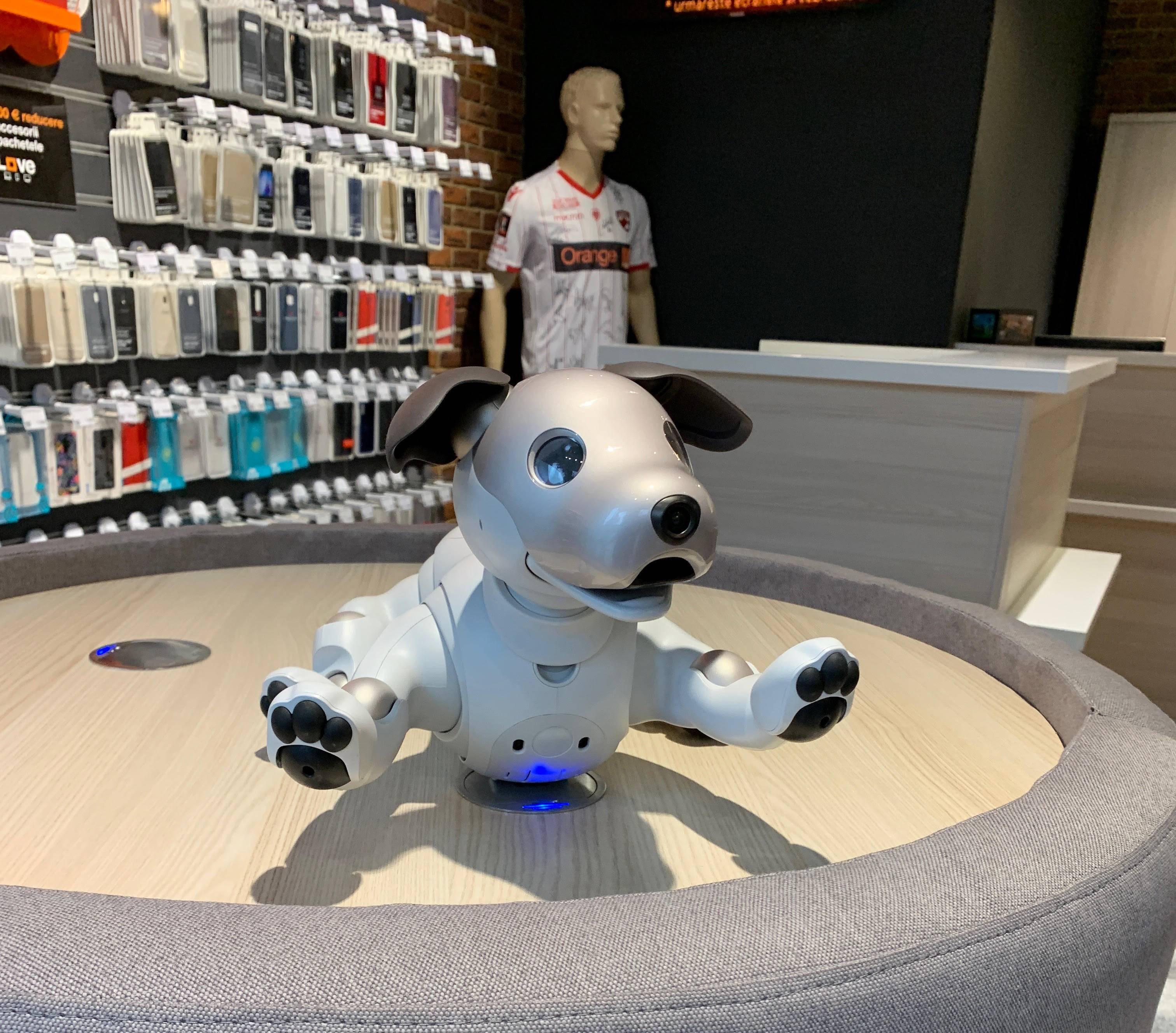 Sony Aibo catel inteligent 3