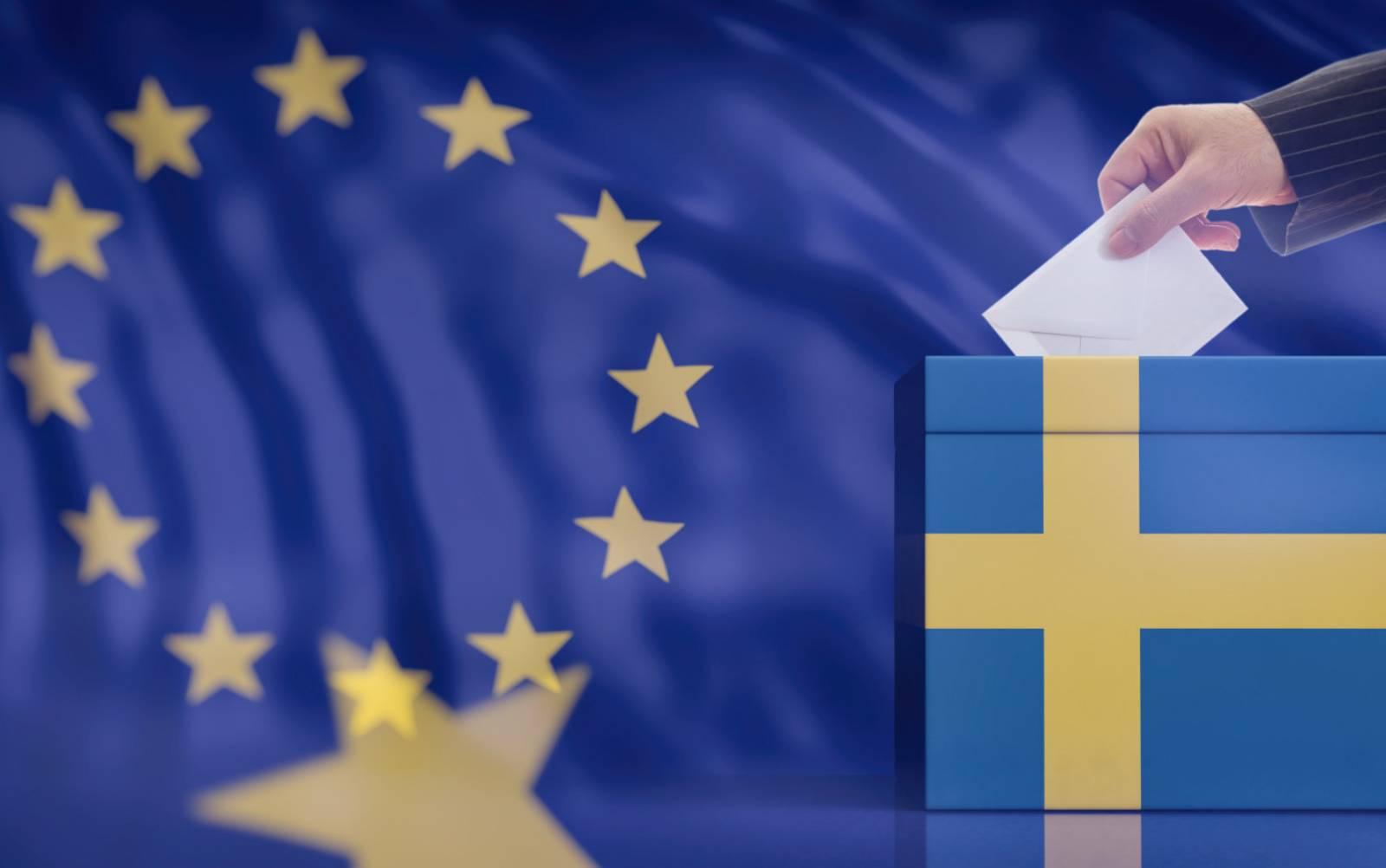 ALEGERI EUROPARLAMENTARE 2019 cum se voteaza