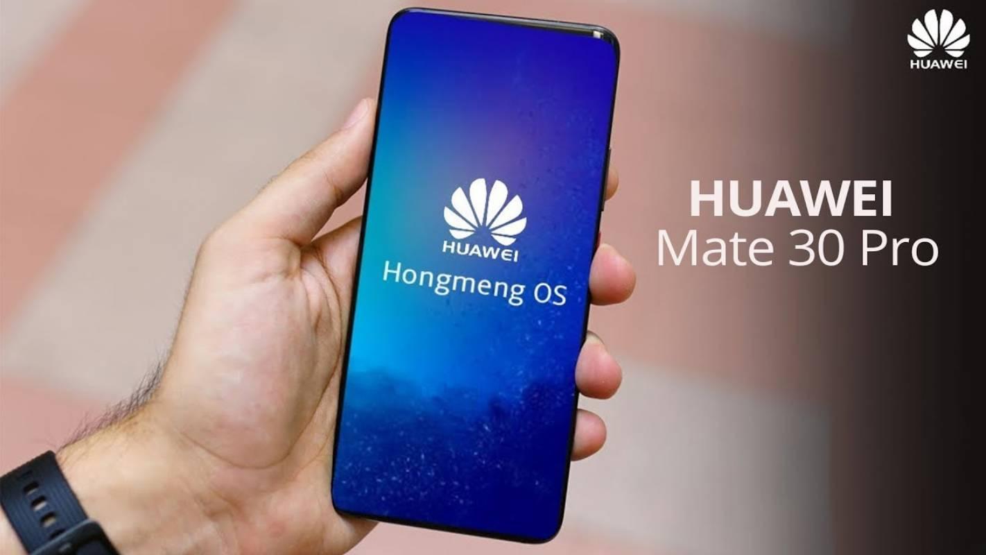 Decupajul Huawei MATE 30 PRO