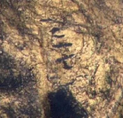 Planeta Marte. ULUITOAREA Imagine care a Pus Internetul PE JAR ET