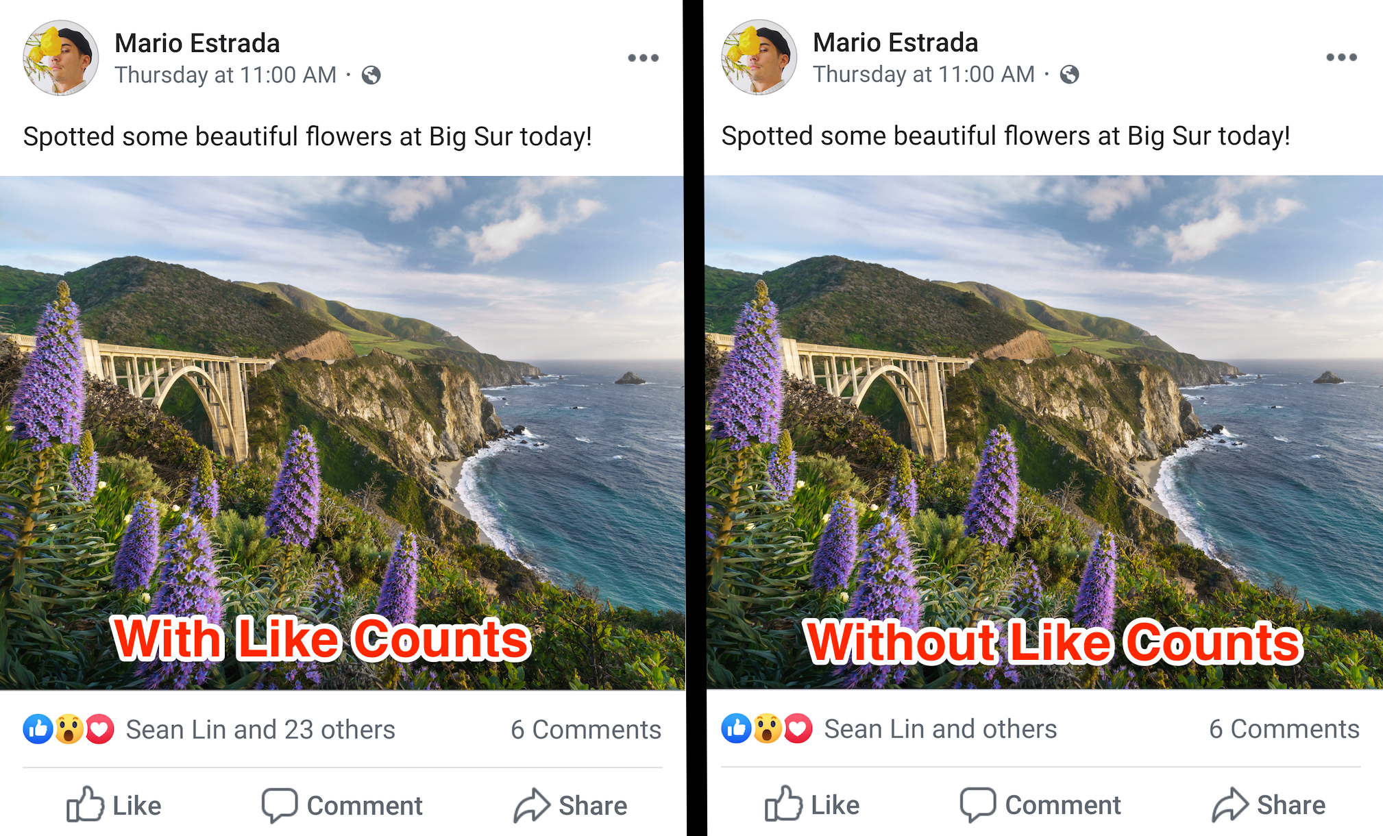 Facebook ascunde like imagine