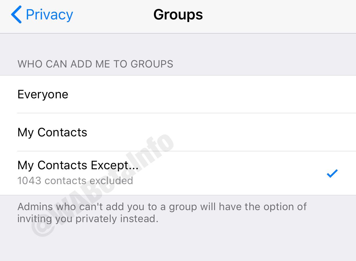 WhatsApp functie Promisa 6 LUNI