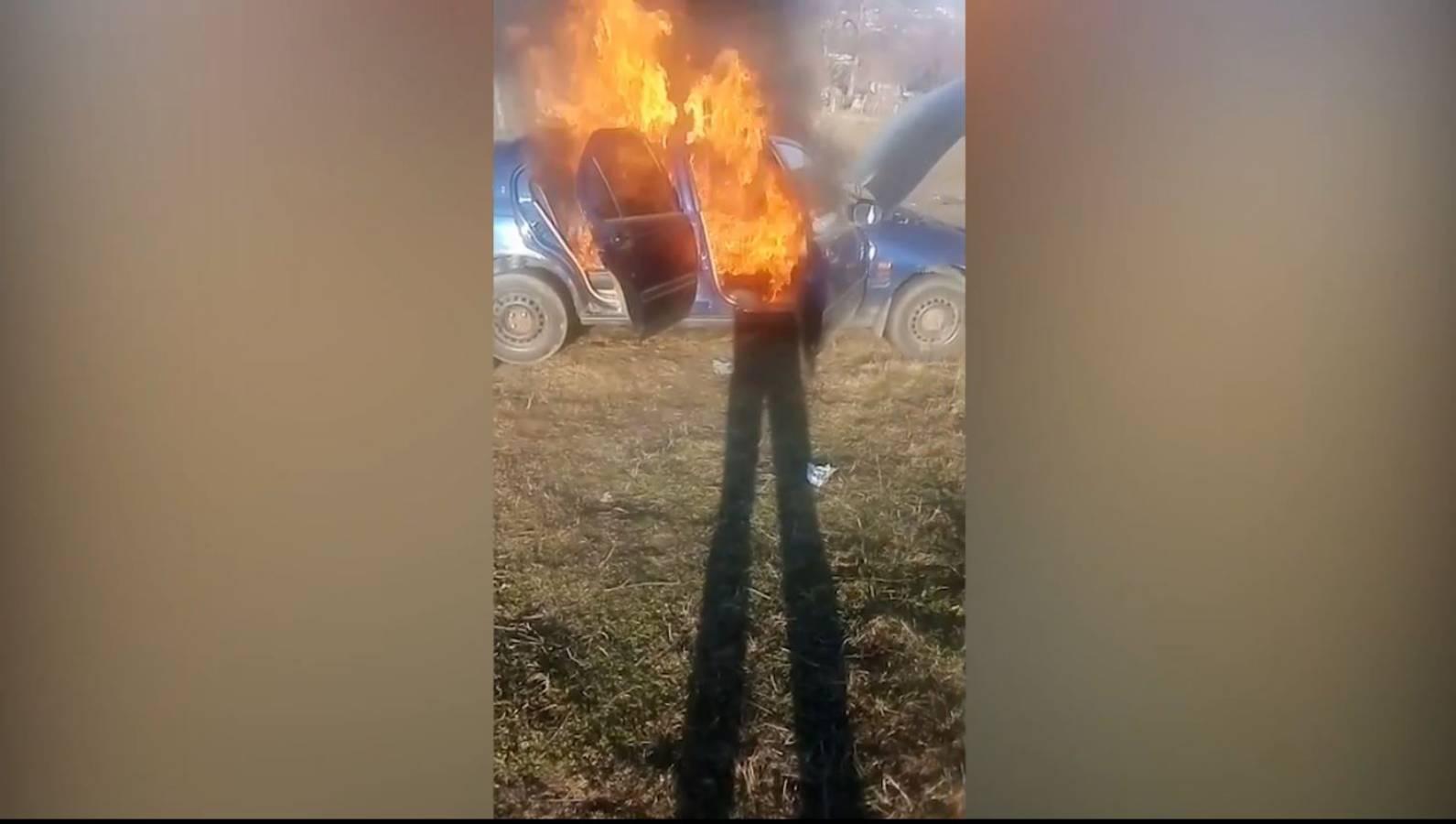 foc masina live facebook like