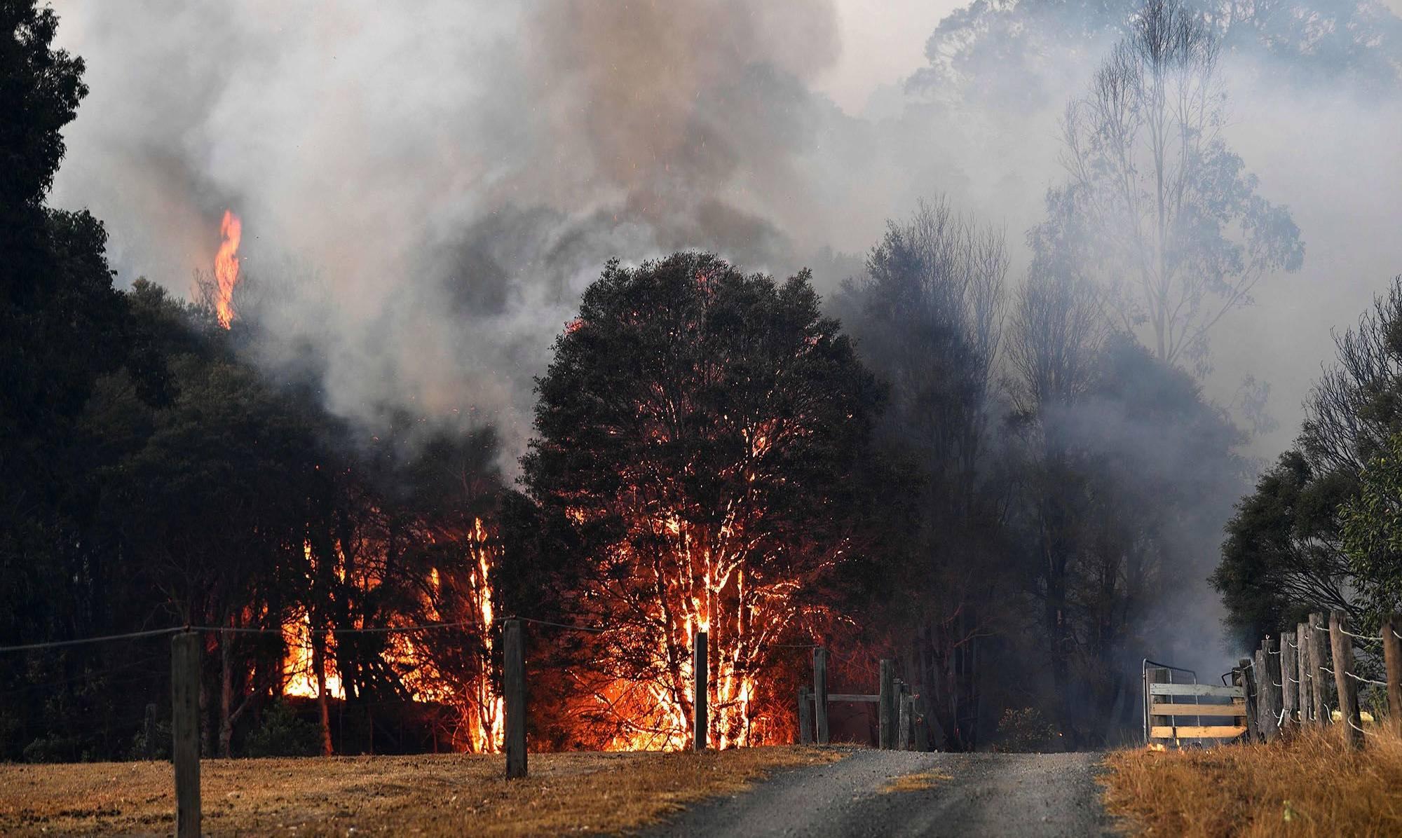 incendii australia nasa