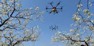 Coronavirus drone