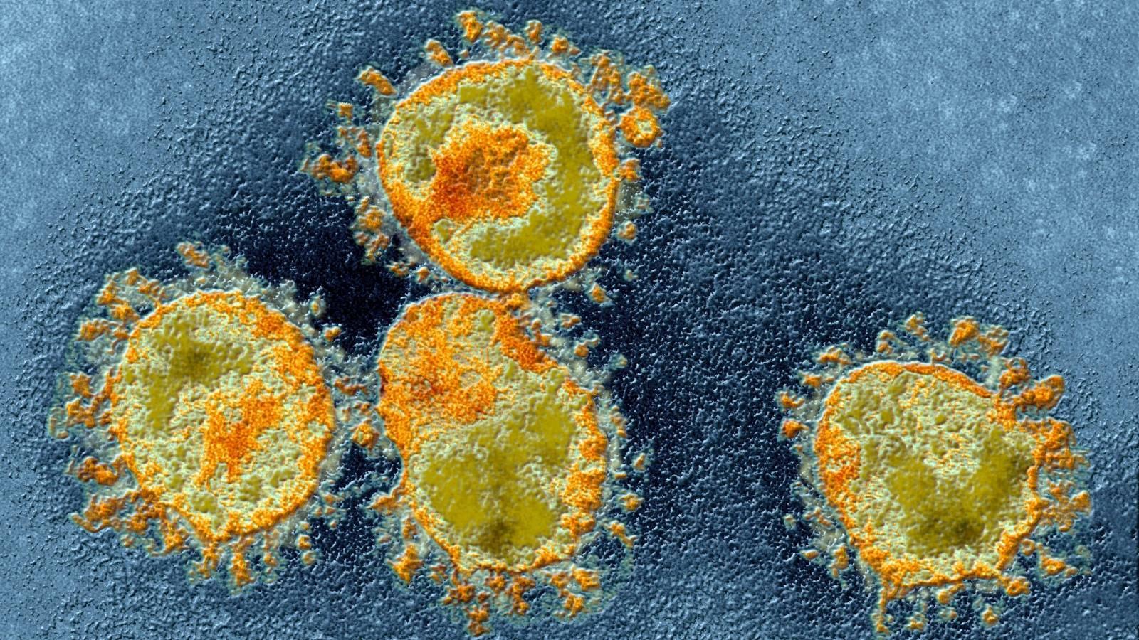 Coronavirus Romania declaratie raspundere responsabilitate