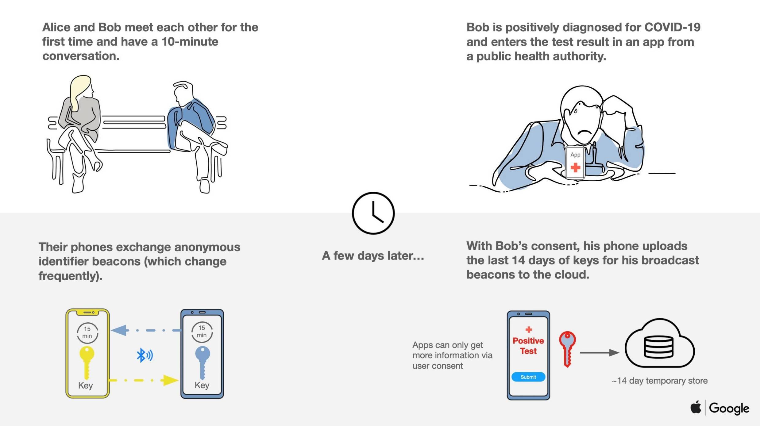 Apple Google MONITORIZARE Coronavirus explicatie