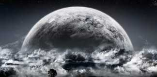 luna companion