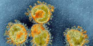 Coronavirus Romania Cazuri Vindecari 3 Iunie
