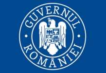 Guvernul Romaniei cazuri zilnice estimate