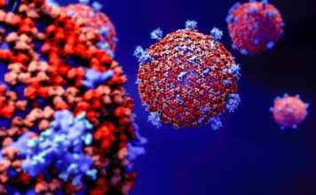 Coronavirus Romania Cazuri Vindecari 4 August