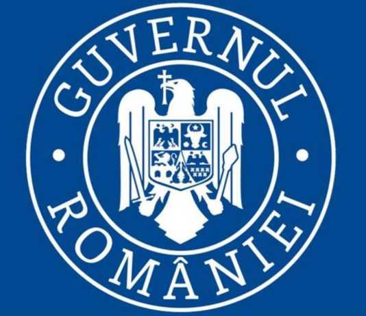 Guvernul Romaniei ALETA Cibernetica